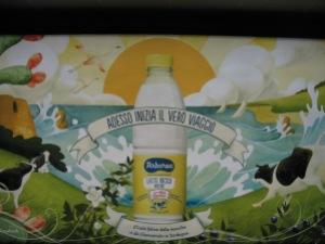 latte arborea